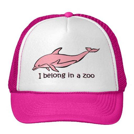 Dauphin de zoo casquette
