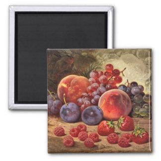 De fruit frais toujours la vie magnets pour réfrigérateur