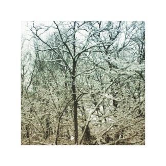 Decke des Schnees Leinwanddruck