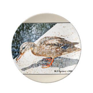 "Dekorative Platte ""Kronen-König Duck im Regen "" Porzellanteller"