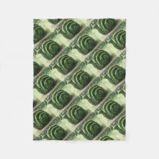 Dekorativer Topiarygrün-Gartenschneckebusch Fleecedecke