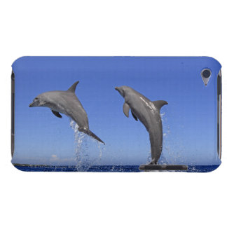 Delfin 2 iPod touch etuis