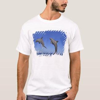 Delfin, Dauphin, groberes Tuemmler, Tursiops 3 T-Shirt