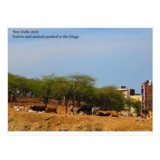 Delhi-Metroentwicklungs-Tiereingeborene zum Rand Postkarte