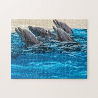 Delphin-Fotopuzzlespiel