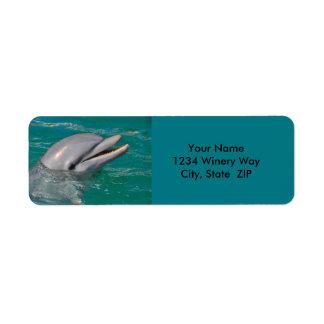 Delphin-nahes hohes rücksendeetikett