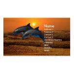 Delphine am Sonnenuntergang Visitenkarte