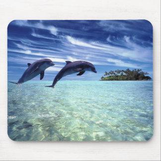 Delphine reichlich mousepads