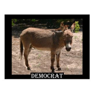 Demokratischer Esel Postkarten