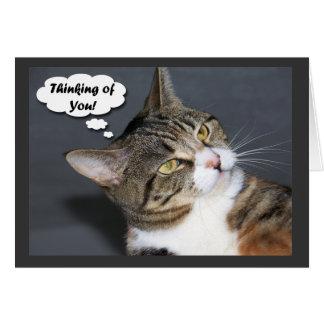 Denken an Sie mit Foto einer niedlichen Katze Grußkarte