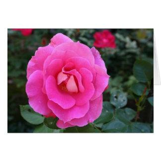 Denken an Sie Rosa-Rosen-Karte Grußkarte