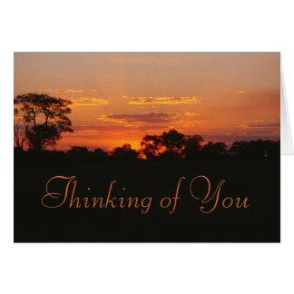 Der Akazien-Sonnenuntergang, der an Sie denkt, Karte
