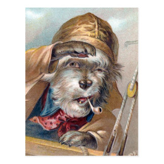 """Der alte Seehund"" Vintag Postkarte"