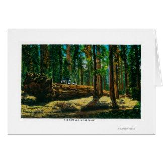 Der Auto-LOGON-riesige Wald, Rothölzer Karte