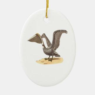 Der Brown-Pelikan(Pelecanus fuscus) Ovales Keramik Ornament