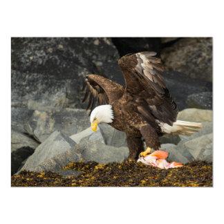 Der entscheidende Weißkopfseeadler Karte