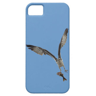 Der Fliegen-Osprey-u. Fisch-2 Tier-Fotografie iPhone 5 Case