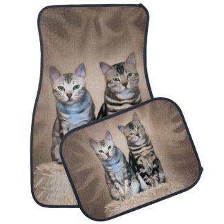 Der grelle Glanz des silbernen Meowbles Auto Fussmatte