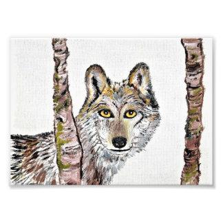 Der schlaue Wolf Kunst Photo