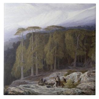 Der Wald von Valdoniello, Korsika, 1869 (Öl auf c Große Quadratische Fliese