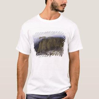 Der Wald von Valdoniello, Korsika, 1869 (Öl auf c T-Shirt