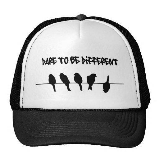 Des oiseaux sur un fil - osez être différent casquette
