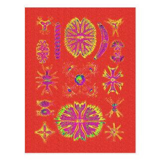 Desmidiea auf gebrannter Orange Postkarten