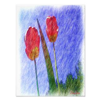 dessin de fleur de tulipe photo d'art