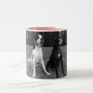 Deutsche Dogge, Great Dane,Hunde,Dogue Allemand Kaffeehaferl