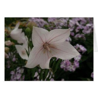 Deutsche-Gute Erholung-Empfindliche Blume Grußkarte