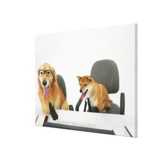 Deux chiens portant la cravate et les lunettes, se toile tendue