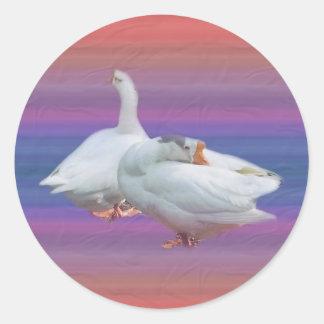 deux oies blanches espiègles sticker rond