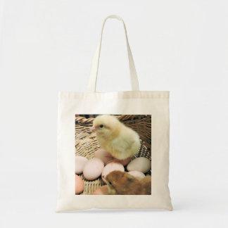 Deux poulets de bébé dans un panier des oeufs sac en toile budget