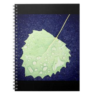 Dewy Blatt-Notizbuch Spiral Notizblock