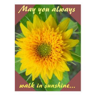 Diamant-Sonnenblume mit dem Inspirieren der Postkarte