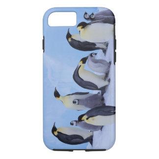 Die Antarktis, Emporer Pinguin ((Aptenodytes iPhone 8/7 Hülle