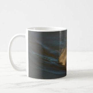 Die Baby-Kanadier-Gans Kaffeetasse