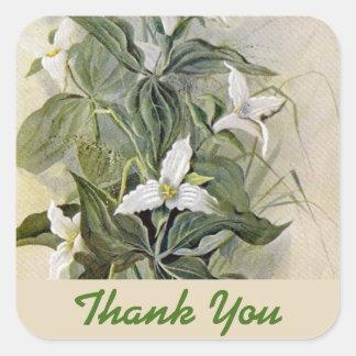 Die botanische Wildblume danken Ihnen Grün des Quadratischer Aufkleber