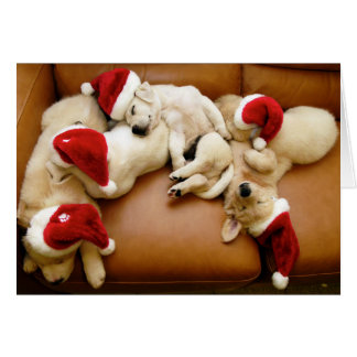 Die Hundstage von Weihnachten Karte