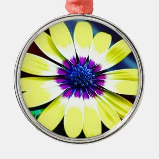 Die Schönheit von Gelbem und von Lila Silbernes Ornament