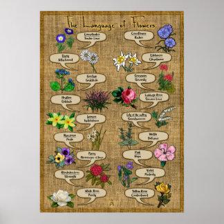 Die Sprache der Blumen Poster