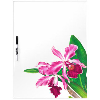 Die tropischen Blumen Orchideen-Blumen trocknen Memoboard