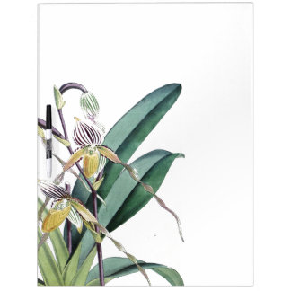 Die tropischen Blumen Orchideen-Blumen trocknen Trockenlöschtafel