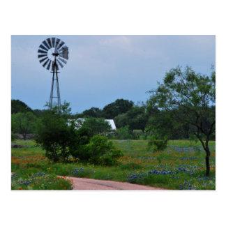 Die Windmühle in den Wildblumen Postkarte