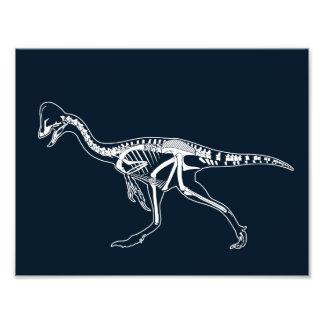 Dinosaurier, Dino, Saurus Skelett-Illustration Fotodruck