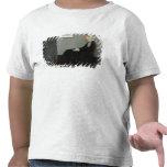 Disposition dans No.1 gris et noir T-shirts