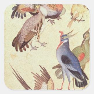 Dix oiseaux autocollants carrés
