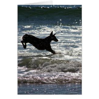 Dobermann - Schwarzes - Ozean-Sprung Mitteilungskarte