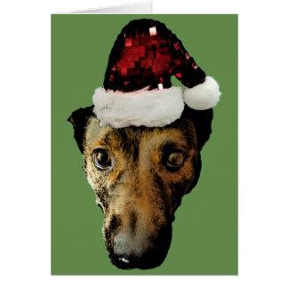 Doggo Klaus Karte (Grün)