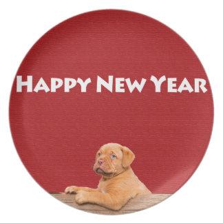 Dogue de Bordeaux, das guten Rutsch ins Neue Jahr Essteller